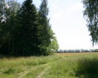 zemelniy-uchastok-105156